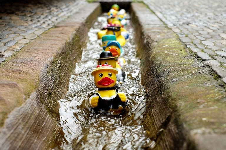 Don't duck out on your filing obligations – use this self-assessment tax return checklist