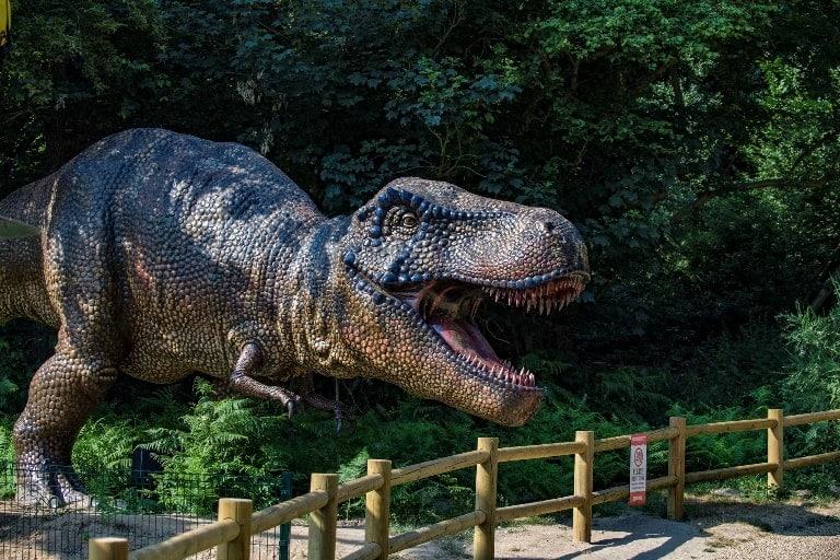 It's half price February this half term at Roarr! Dinosaur Adventure