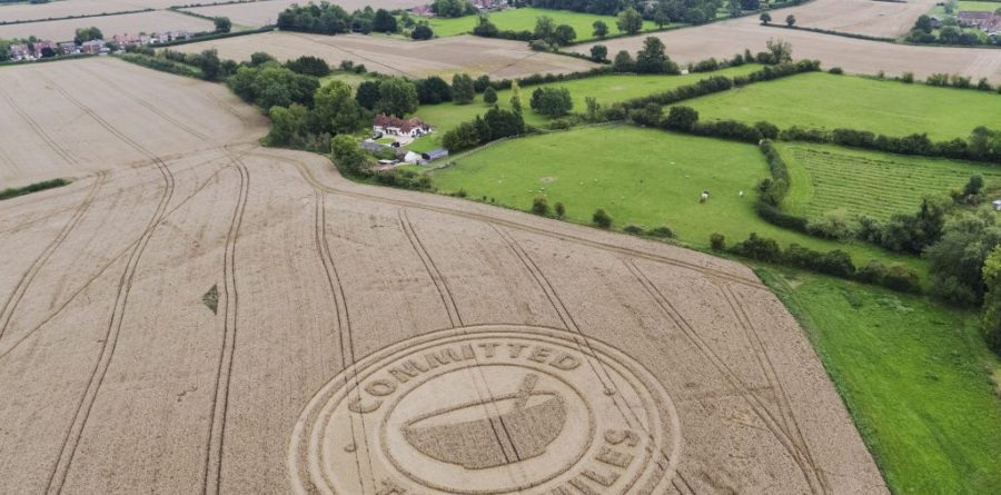 A stunning crop circle has appeared in the British countryside