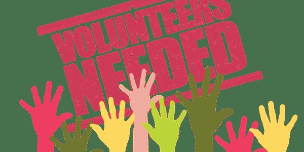 Volunteers 3874924 1920